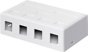Keystone box 4-port